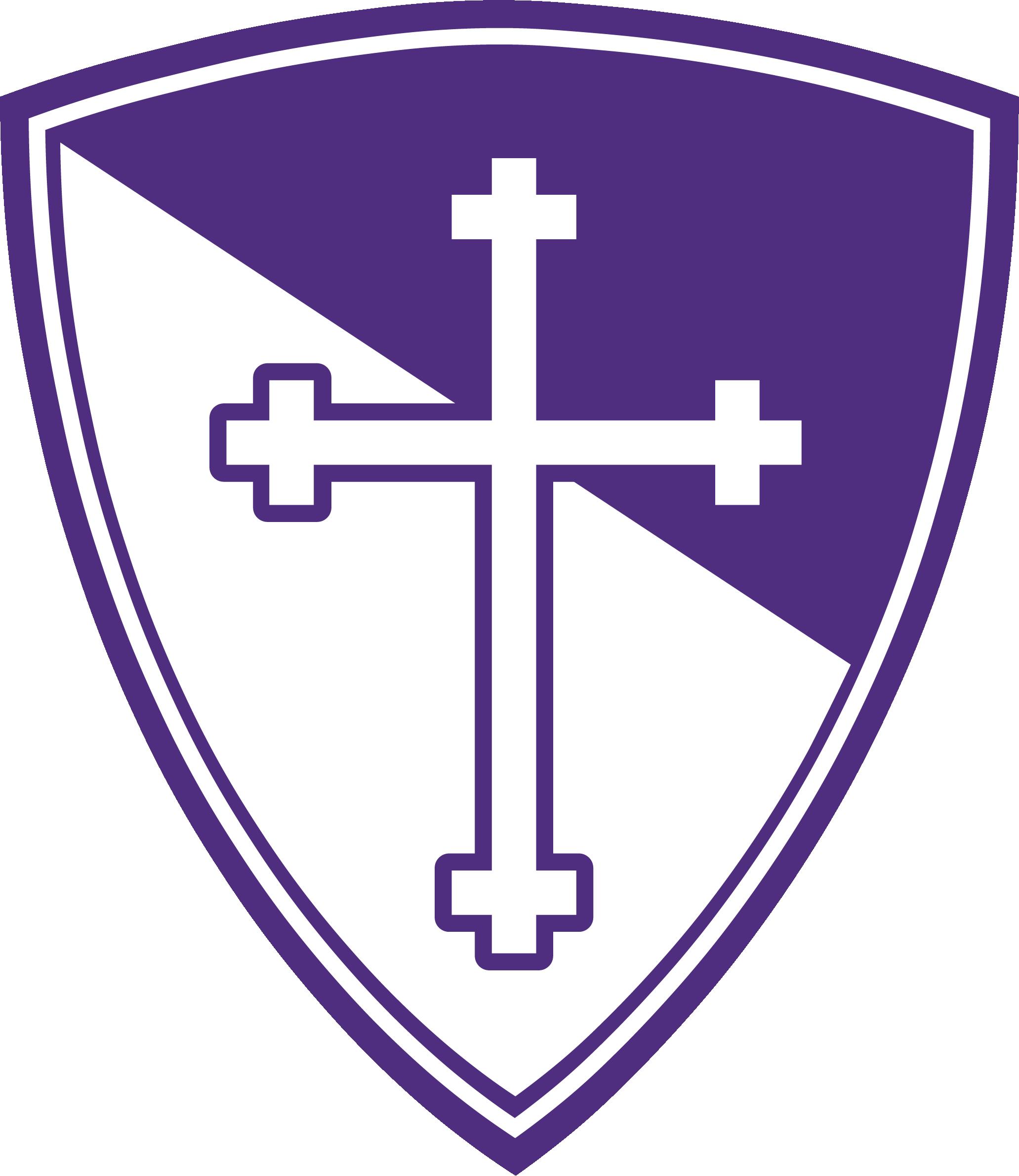 BYX shield